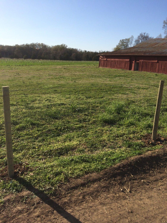 Agricultural Fencing | SE Agricultural Fencing